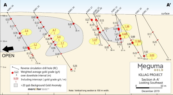 NSAU Killag 20 ppb threshold low level gold distribution longitudinal section