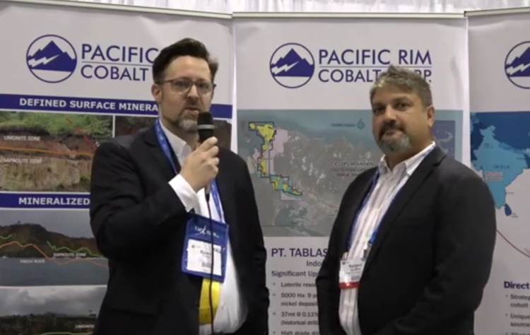 Screenshot PDAC Interview