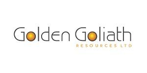 300x150_GoldenGoliath