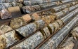 Bohrkerne vom Carmacks-Projekt; Quelle: Granite Creek Copper